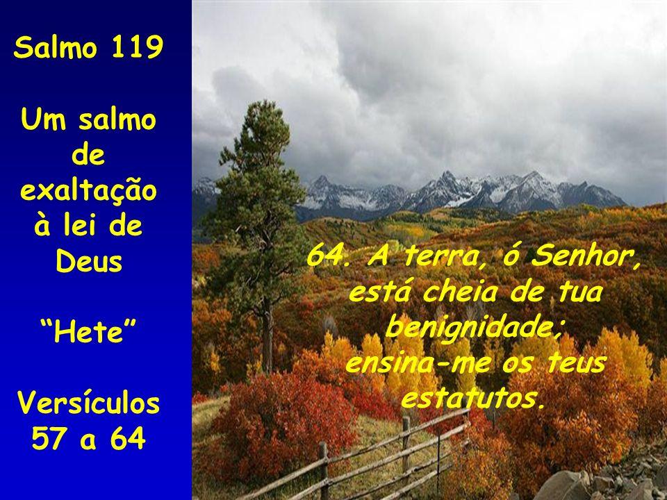 64. A terra, ó Senhor, está cheia de tua benignidade; ensina-me os teus estatutos. Salmo 119 Um salmo de exaltação à lei de Deus Hete Versículos 57 a