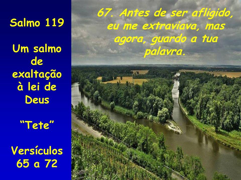 67. Antes de ser afligido, eu me extraviava, mas agora, guardo a tua palavra. Salmo 119 Um salmo de exaltação à lei de Deus Tete Versículos 65 a 72