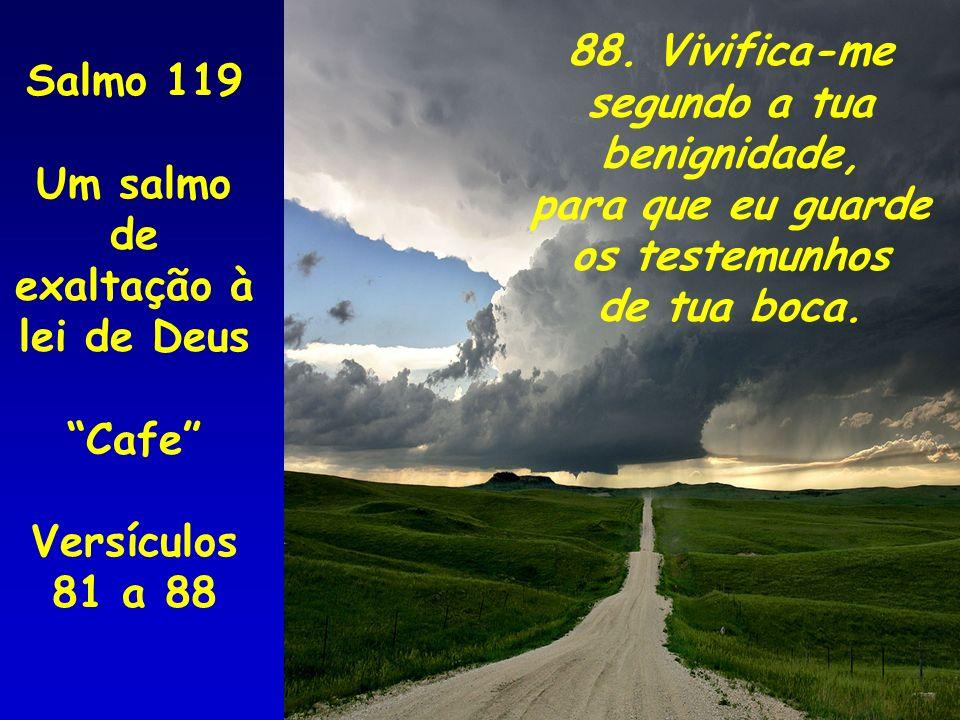 88. Vivifica-me segundo a tua benignidade, para que eu guarde os testemunhos de tua boca. Salmo 119 Um salmo de exaltação à lei de Deus Cafe Versículo