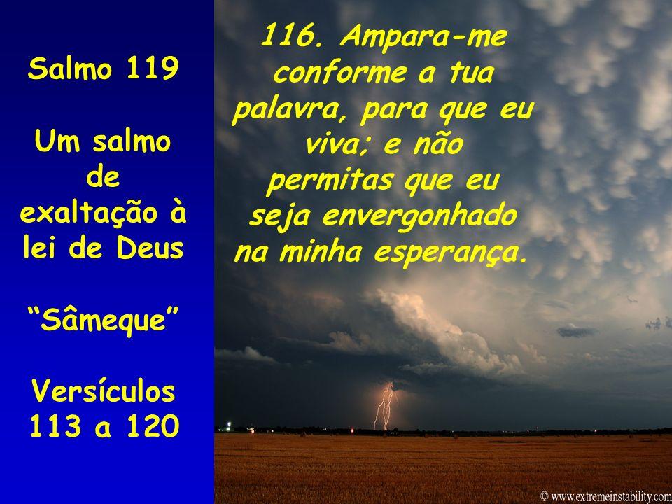 Salmo 119 Um salmo de exaltação à lei de Deus Sâmeque Versículos 113 a 120 116. Ampara-me conforme a tua palavra, para que eu viva; e não permitas que