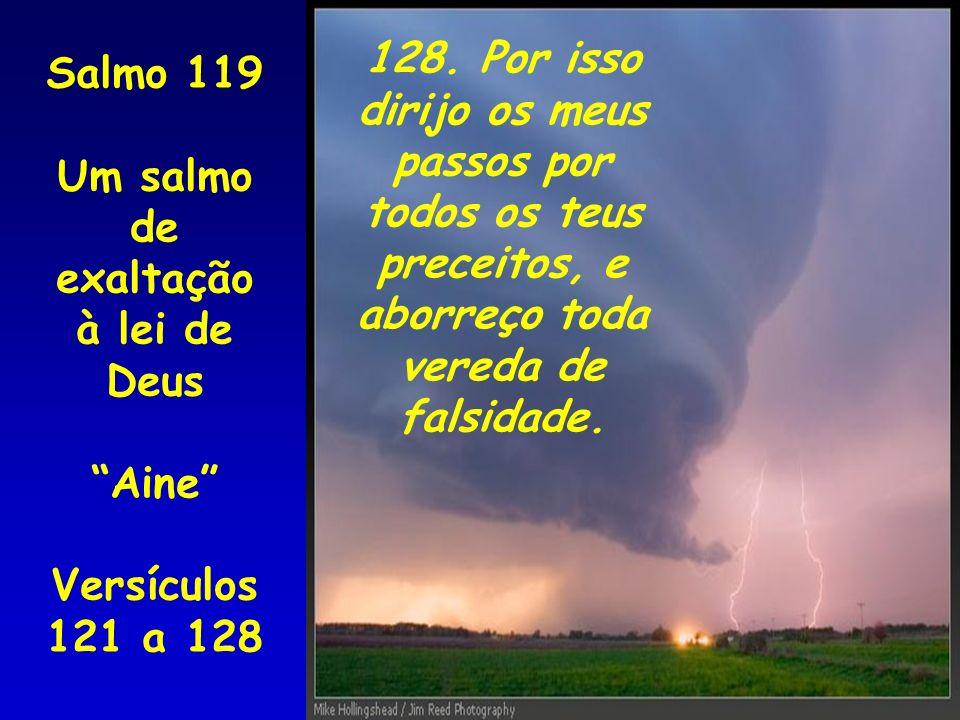 Salmo 119 Um salmo de exaltação à lei de Deus Aine Versículos 121 a 128 128. Por isso dirijo os meus passos por todos os teus preceitos, e aborreço to