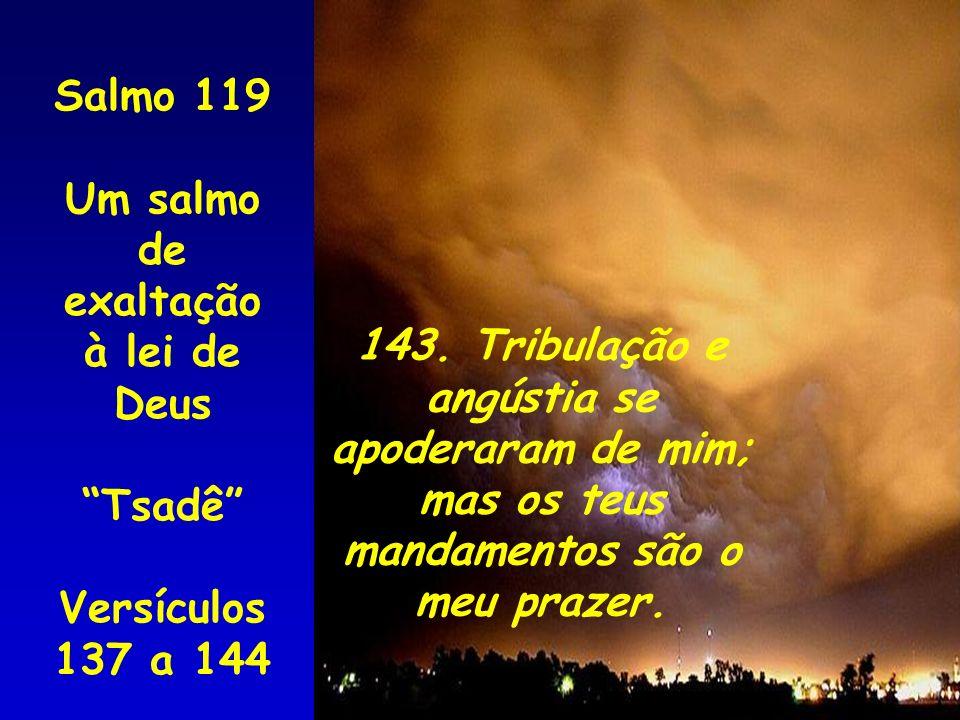 Salmo 119 Um salmo de exaltação à lei de Deus Tsadê Versículos 137 a 144 143. Tribulação e angústia se apoderaram de mim; mas os teus mandamentos são