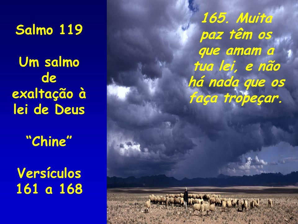 Salmo 119 Um salmo de exaltação à lei de Deus Chine Versículos 161 a 168 165. Muita paz têm os que amam a tua lei, e não há nada que os faça tropeçar.