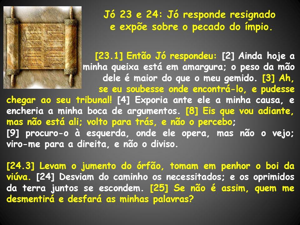 Jó 23 e 24: Jó responde resignado e expõe sobre o pecado do ímpio. [23.1] Então Jó respondeu: [2] Ainda hoje a minha queixa está em amargura; o peso d