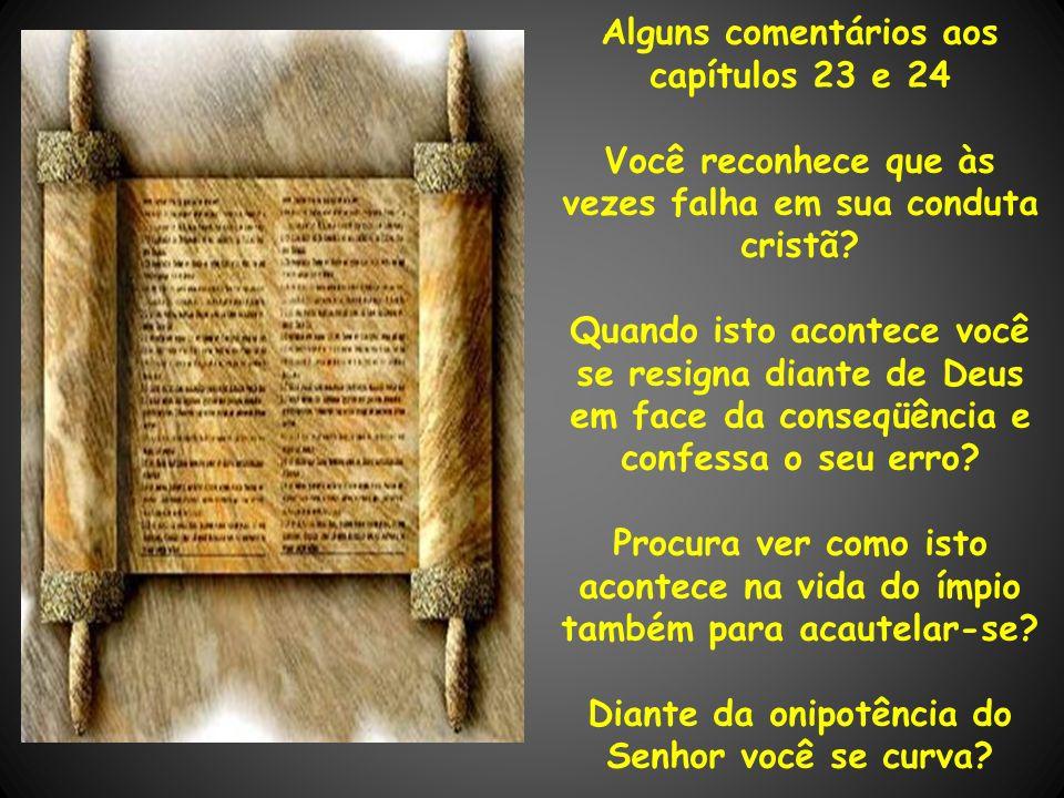 Alguns comentários aos capítulos 23 e 24 Você reconhece que às vezes falha em sua conduta cristã? Quando isto acontece você se resigna diante de Deus