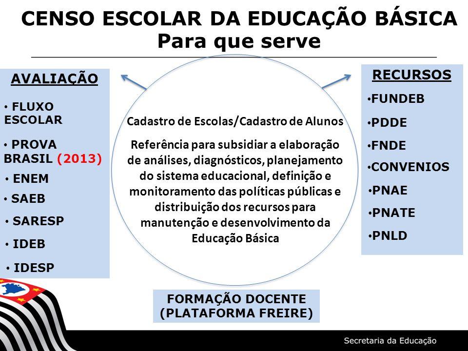 FORMAÇÃO DOCENTE (PLATAFORMA FREIRE) Cadastro de Escolas/Cadastro de Alunos Referência para subsidiar a elaboração de análises, diagnósticos, planejam