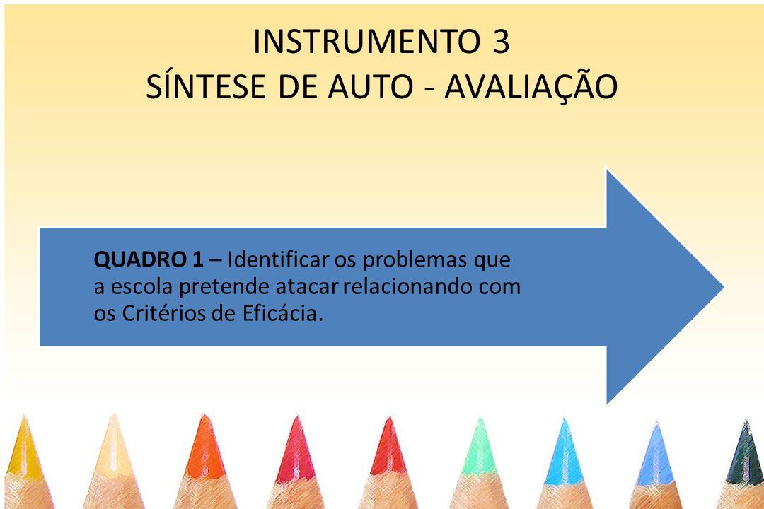 INSTRUMENTO 3 SÍNTESE DE AUTO - AVALIAÇÃO QUADRO 1 – Identificar os problemas que a escola pretende atacar relacionando com os Critérios de Eficácia.
