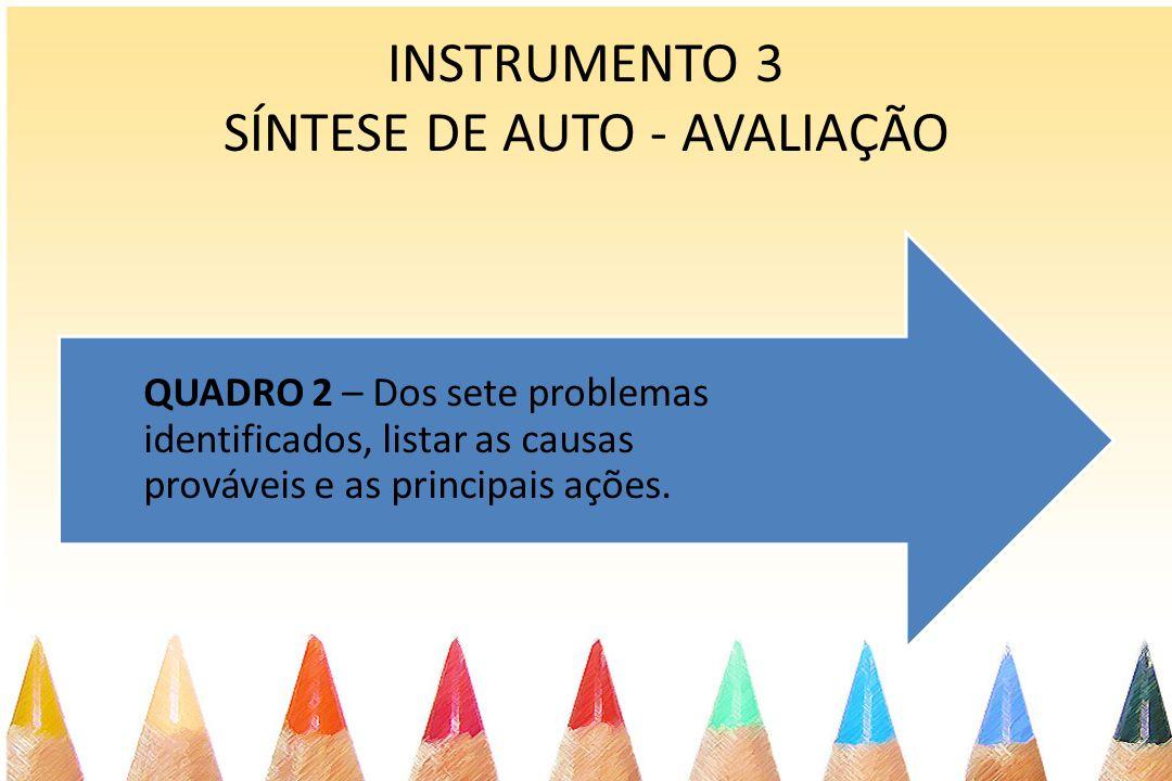 INSTRUMENTO 3 SÍNTESE DE AUTO - AVALIAÇÃO QUADRO 2 – Dos sete problemas identificados, listar as causas prováveis e as principais ações.
