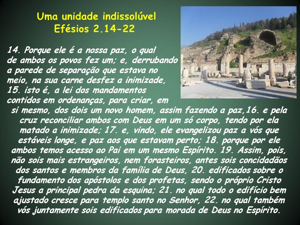 Uma unidade indissolúvel Efésios 2.14-22 14. Porque ele é a nossa paz, o qual de ambos os povos fez um; e, derrubando a parede de separação que estava