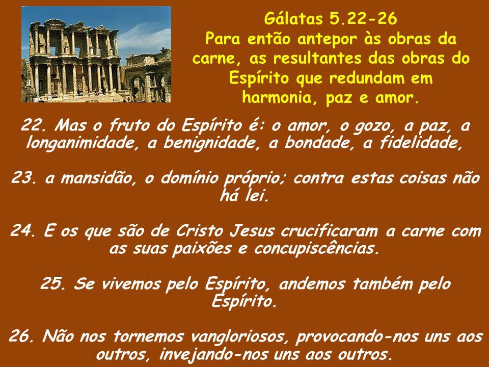 22. Mas o fruto do Espírito é: o amor, o gozo, a paz, a longanimidade, a benignidade, a bondade, a fidelidade, 23. a mansidão, o domínio próprio; cont
