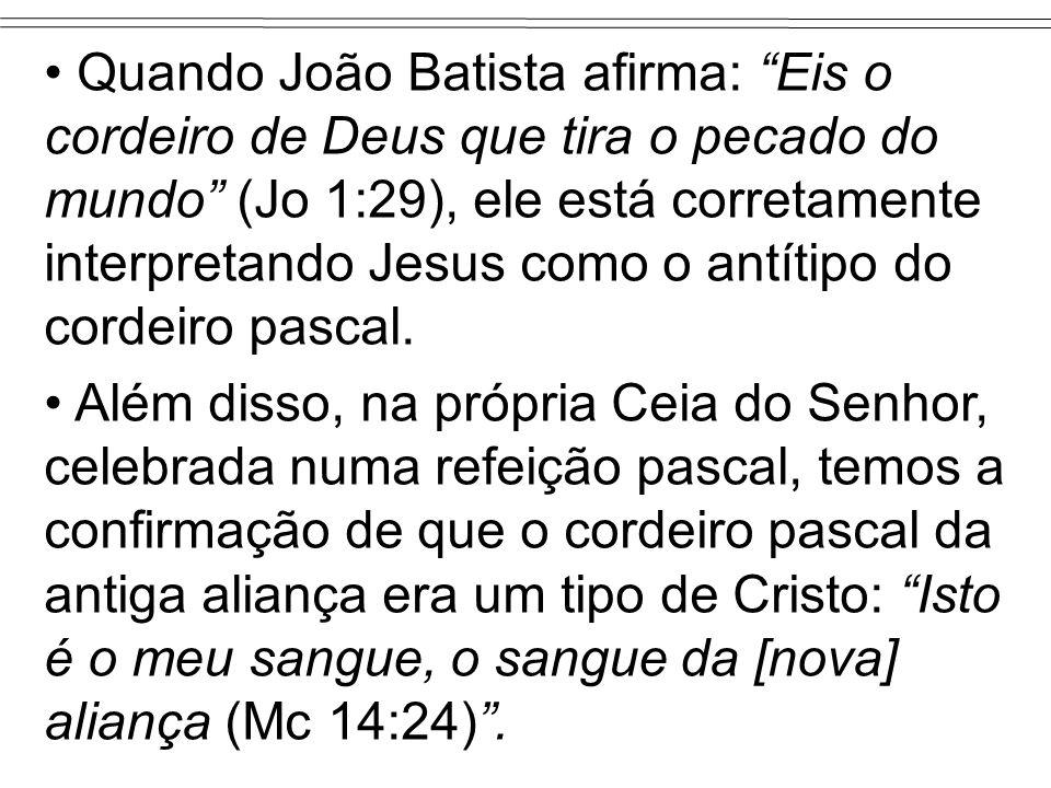Quando João Batista afirma: Eis o cordeiro de Deus que tira o pecado do mundo (Jo 1:29), ele está corretamente interpretando Jesus como o antítipo do