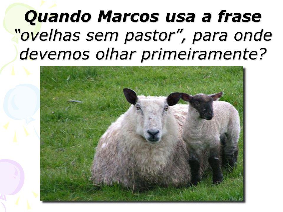 Quando Marcos usa a frase ovelhas sem pastor, para onde devemos olhar primeiramente?