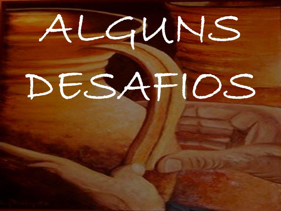 ALGUNS DESAFIOS