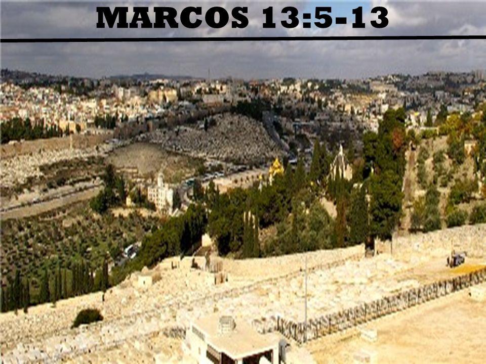 DUAS OBSERVAÇÕES 1)Os sinais estão colocados de forma bem geral a fim de nos mostrarem que a vinda de Cristo é certa, e não de que a vinda está próxima.