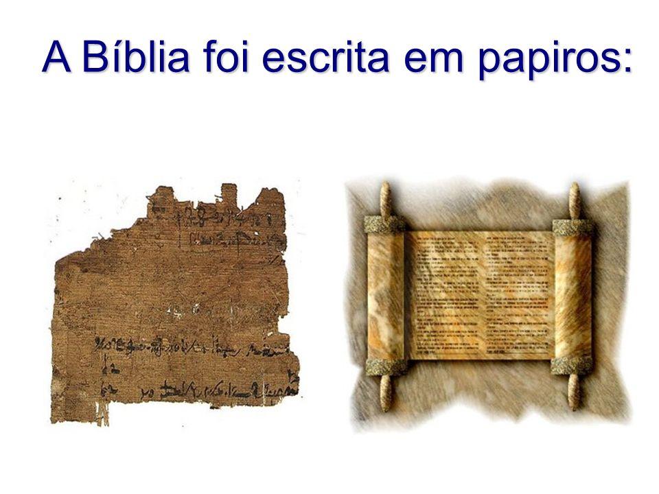 A Bíblia foi escrita em papiros: