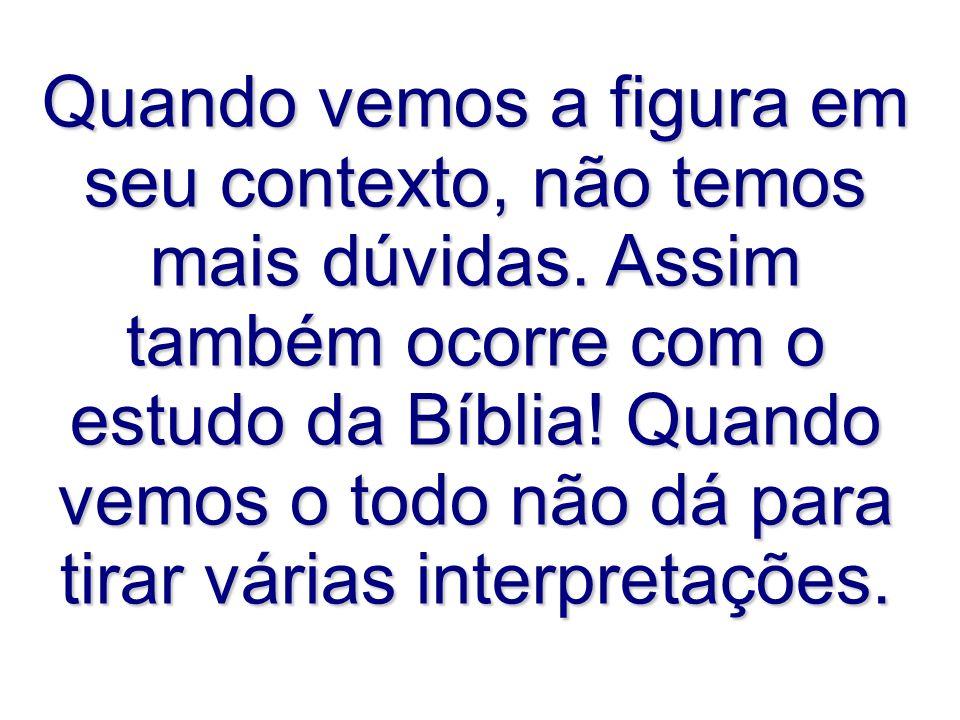 Quando vemos a figura em seu contexto, não temos mais dúvidas. Assim também ocorre com o estudo da Bíblia! Quando vemos o todo não dá para tirar vária