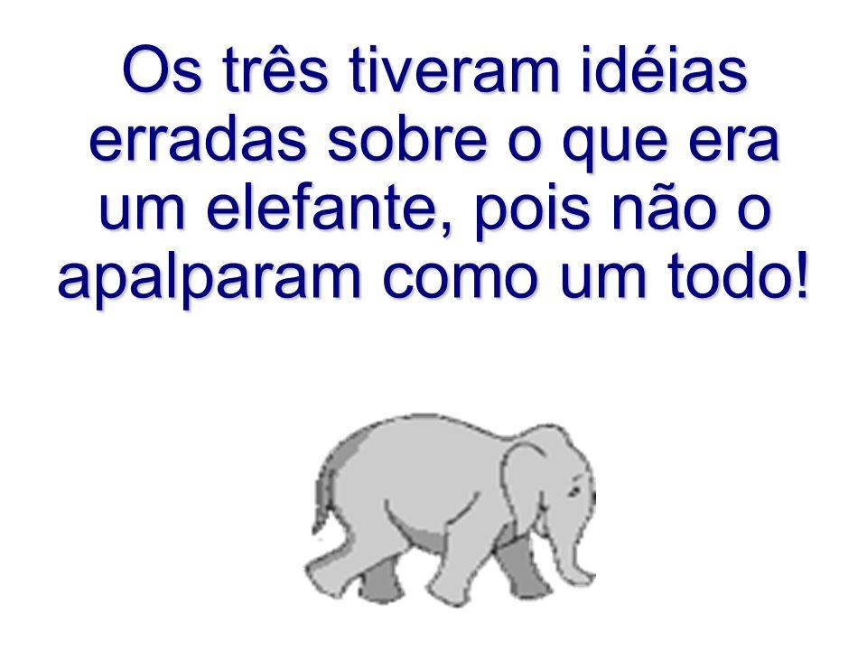 Os três tiveram idéias erradas sobre o que era um elefante, pois não o apalparam como um todo!