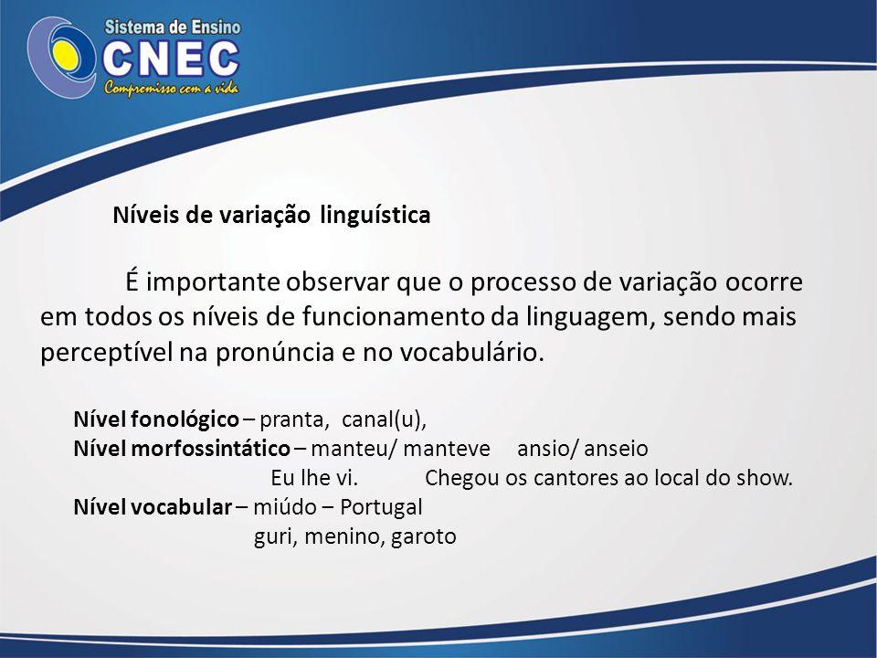 Níveis de variação linguística É importante observar que o processo de variação ocorre em todos os níveis de funcionamento da linguagem, sendo mais pe