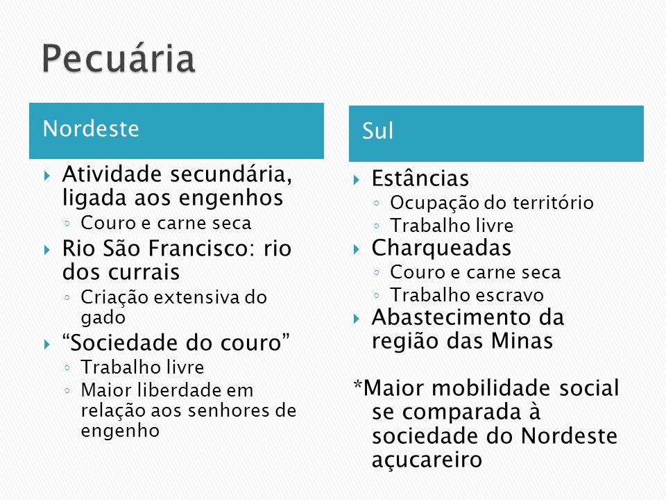 Nordeste Sul Atividade secundária, ligada aos engenhos Couro e carne seca Rio São Francisco: rio dos currais Criação extensiva do gado Sociedade do co