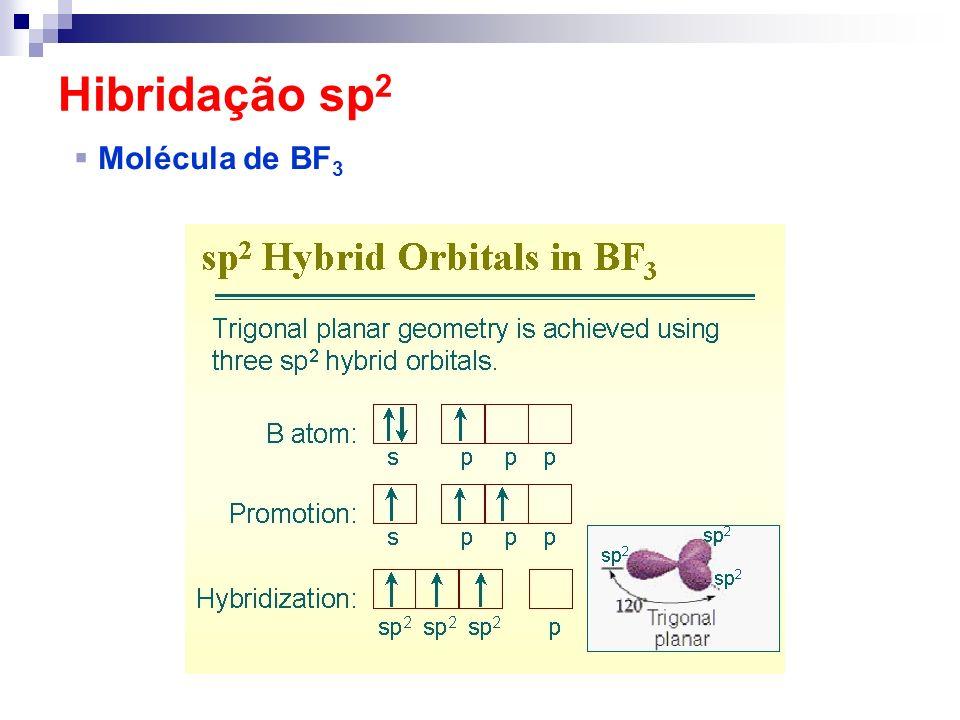 Hibridação sp 2 Molécula de BF 3