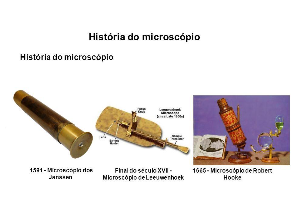História do microscópio 1591 - Microscópio dos Janssen Final do século XVII - Microscópio de Leeuwenhoek 1665 - Microscópio de Robert Hooke