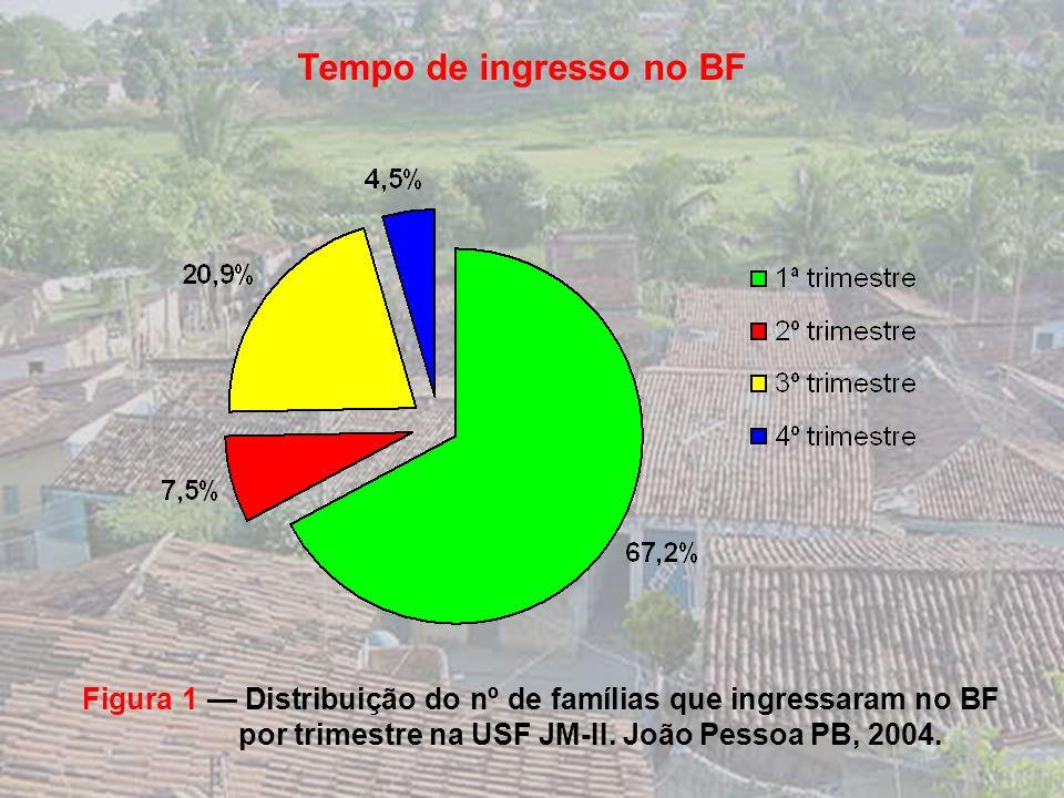 Tamanho da Família : 77% / famílias = 2 a 3 adultos Tamanho da Família : 77% / famílias = 2 a 3 adultos Ocupação : 40% biscates / diversidade de profi