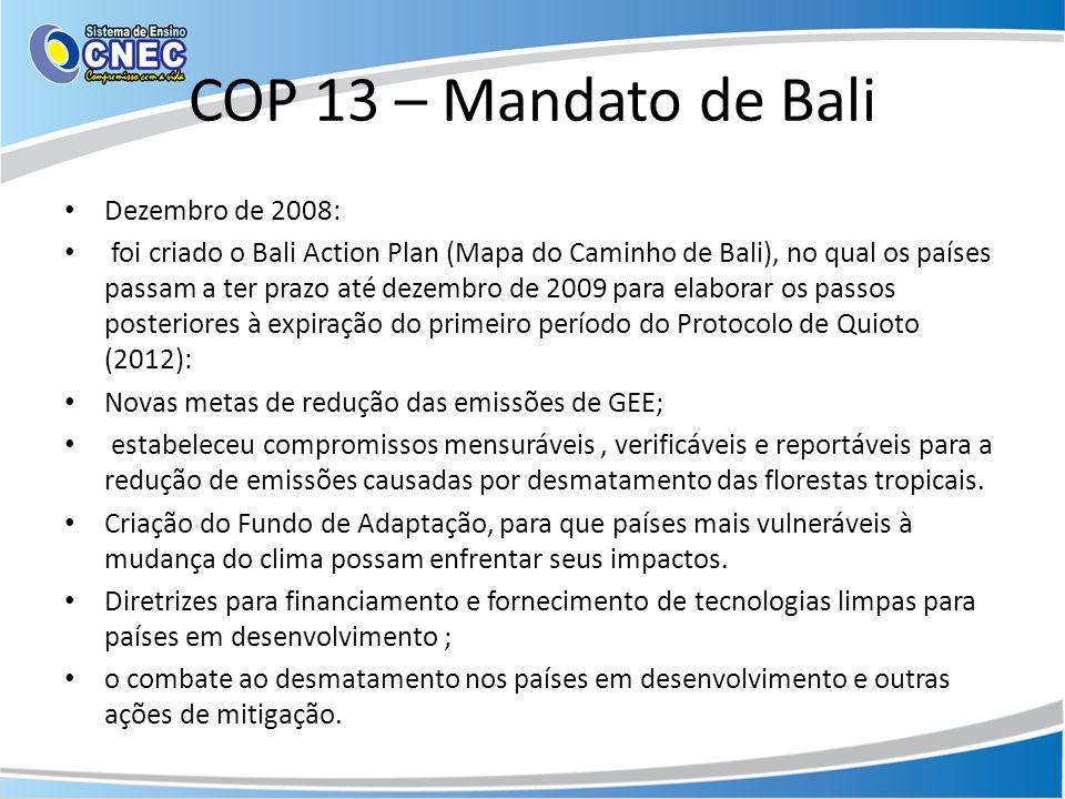 COP 13 – Mandato de Bali Dezembro de 2008: foi criado o Bali Action Plan (Mapa do Caminho de Bali), no qual os países passam a ter prazo até dezembro