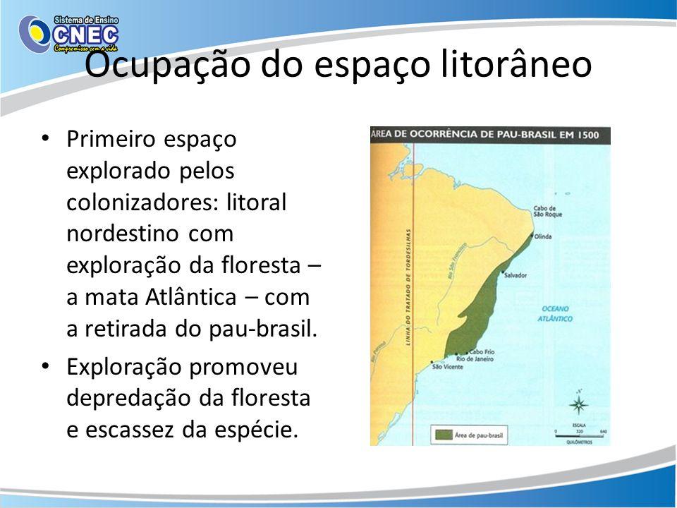 Ocupação do espaço litorâneo Primeiro espaço explorado pelos colonizadores: litoral nordestino com exploração da floresta – a mata Atlântica – com a r