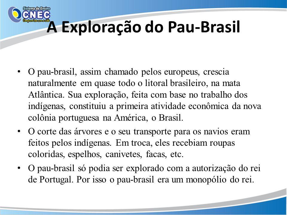A Exploração do Pau-Brasil O pau-brasil, assim chamado pelos europeus, crescia naturalmente em quase todo o litoral brasileiro, na mata Atlântica. Sua