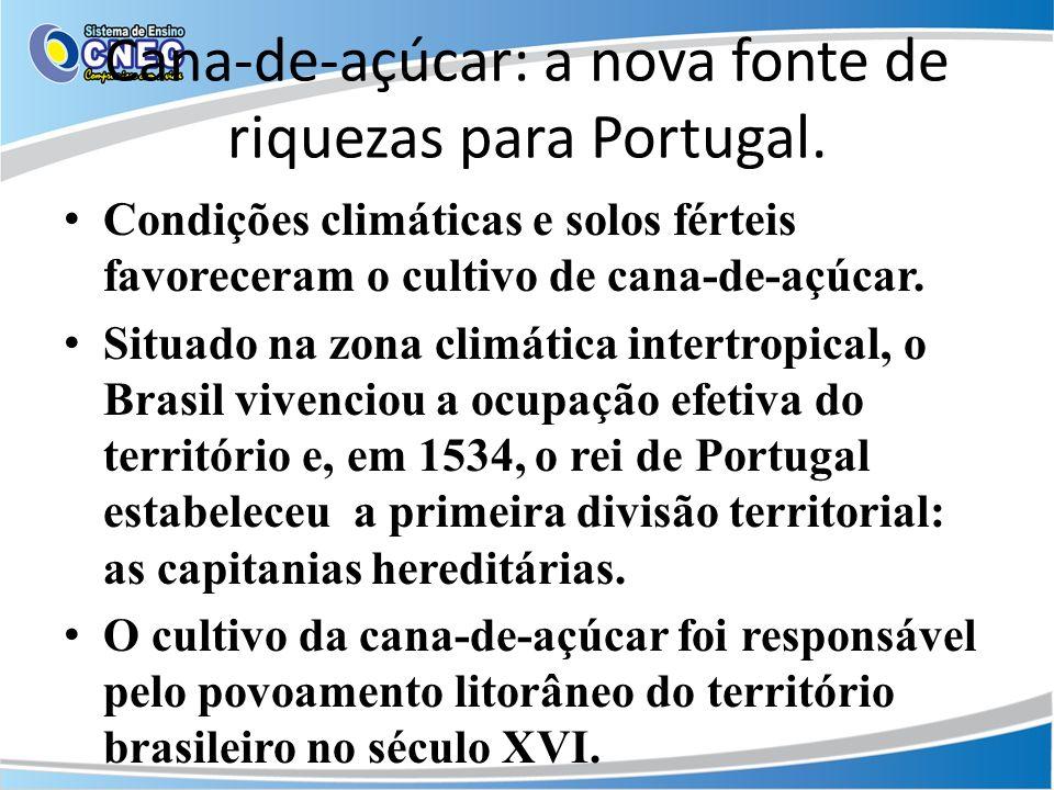 Cana-de-açúcar: a nova fonte de riquezas para Portugal. Condições climáticas e solos férteis favoreceram o cultivo de cana-de-açúcar. Situado na zona