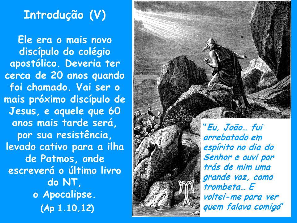Introdução (VI) Além de escrever o seu Evangelho, talvez nos anos 80, vai pastorear a igreja de Éfeso, segundo relatos posteriores, morrendo no ano 103 d.C.