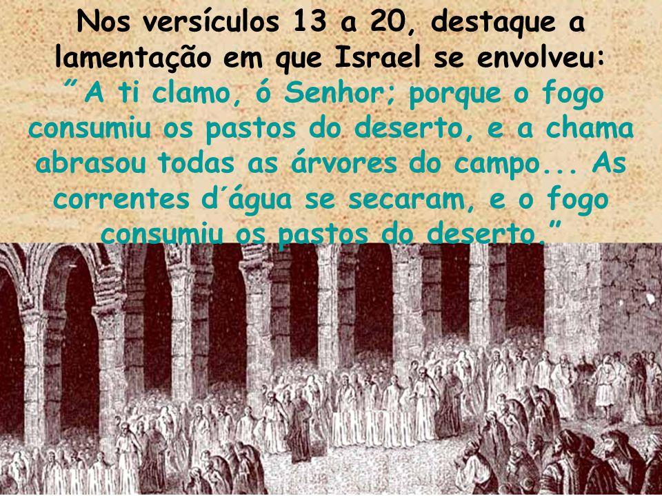 Nos versículos 13 a 20, destaque a lamentação em que Israel se envolveu: A ti clamo, ó Senhor; porque o fogo consumiu os pastos do deserto, e a chama