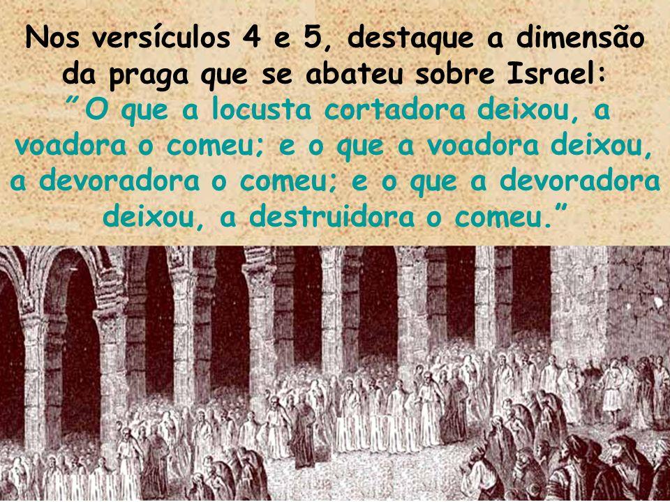 Nos versículos 4 e 5, destaque a dimensão da praga que se abateu sobre Israel: O que a locusta cortadora deixou, a voadora o comeu; e o que a voadora