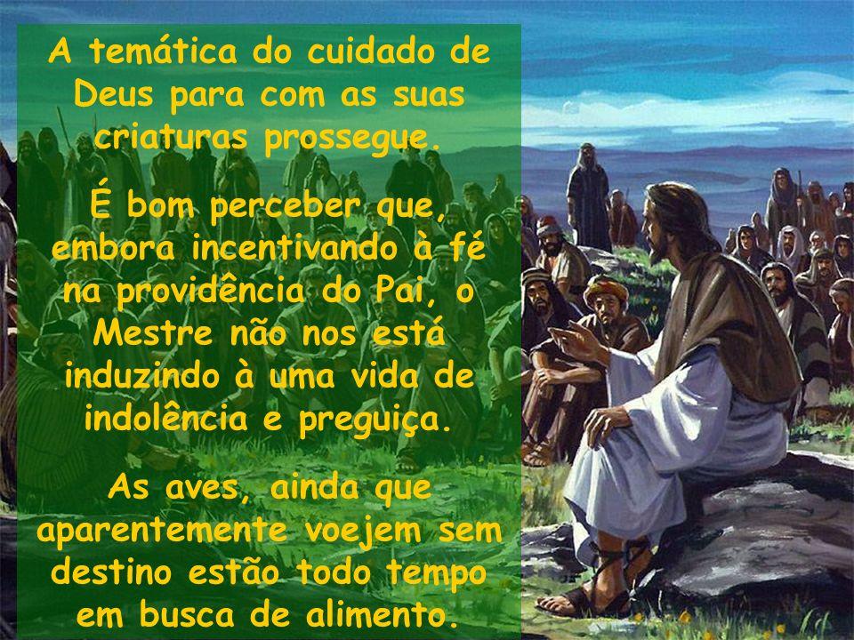 A temática do cuidado de Deus para com as suas criaturas prossegue. É bom perceber que, embora incentivando à fé na providência do Pai, o Mestre não n
