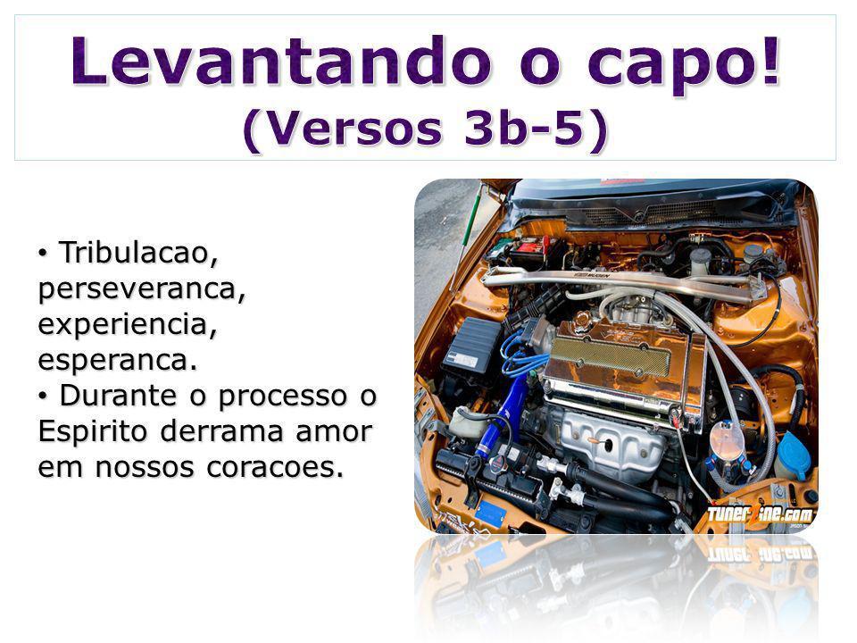 Tribulacao, perseveranca, experiencia, esperanca.Tribulacao, perseveranca, experiencia, esperanca.