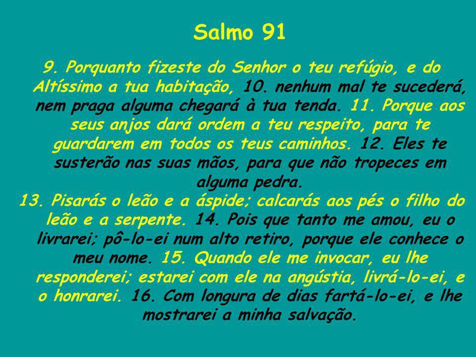 Salmo 91 9. Porquanto fizeste do Senhor o teu refúgio, e do Altíssimo a tua habitação, 10. nenhum mal te sucederá, nem praga alguma chegará à tua tend
