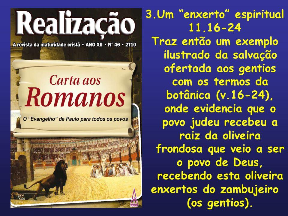 3.Um enxerto espiritual 11.16-24 Traz então um exemplo ilustrado da salvação ofertada aos gentios com os termos da botânica (v.16-24), onde evidencia