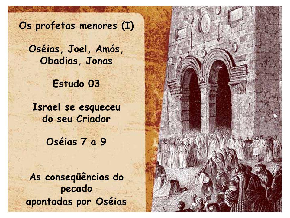 Os profetas menores (I) Oséias, Joel, Amós, Obadias, Jonas Estudo 03 Israel se esqueceu do seu Criador Oséias 7 a 9 As conseqüências do pecado apontad