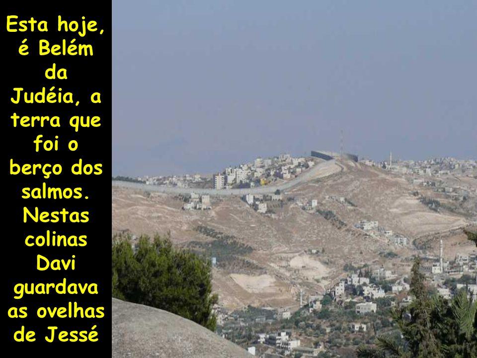 Esta hoje, é Belém da Judéia, a terra que foi o berço dos salmos. Nestas colinas Davi guardava as ovelhas de Jessé