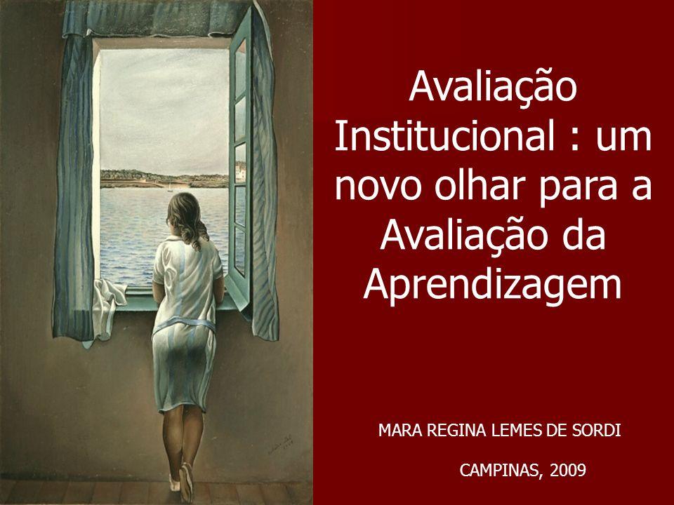 Avaliação Institucional : um novo olhar para a Avaliação da Aprendizagem MARA REGINA LEMES DE SORDI CAMPINAS, 2009
