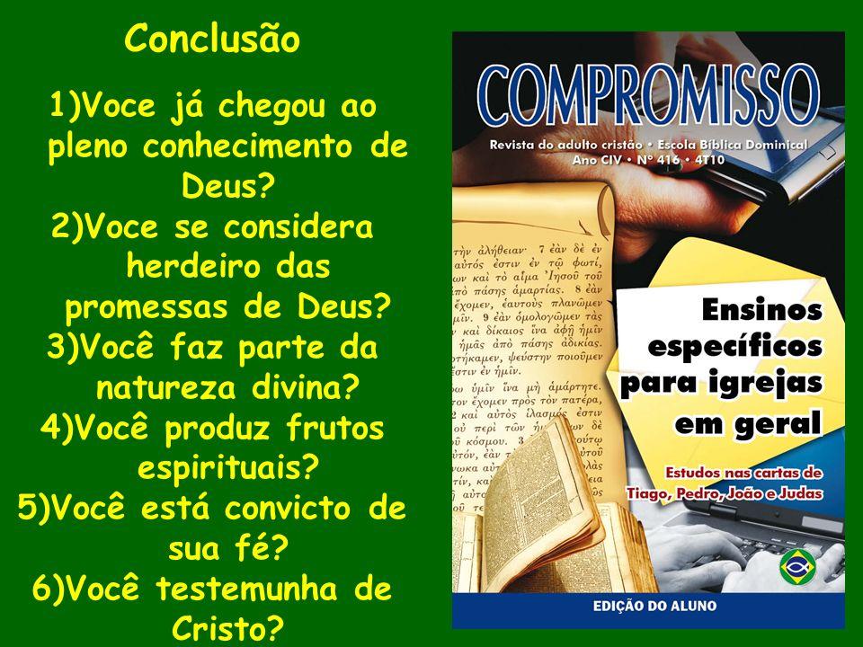 Conclusão 1)Voce já chegou ao pleno conhecimento de Deus? 2)Voce se considera herdeiro das promessas de Deus? 3)Você faz parte da natureza divina? 4)V