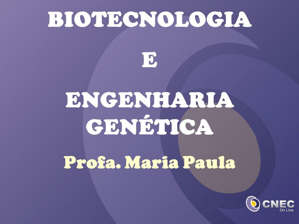 BIOTECNOLOGIA E ENGENHARIA GENÉTICA Profa. Maria Paula