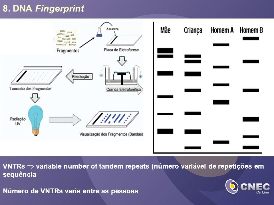 8. DNA Fingerprint VNTRs variable number of tandem repeats (número variável de repetições em sequência Número de VNTRs varia entre as pessoas