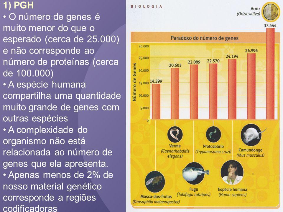1) PGH O número de genes é muito menor do que o esperado (cerca de 25.000) e não corresponde ao número de proteínas (cerca de 100.000) A espécie human