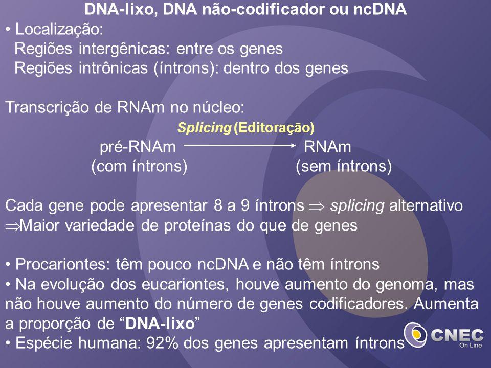 DNA-lixo, DNA não-codificador ou ncDNA Localização: Regiões intergênicas: entre os genes Regiões intrônicas (íntrons): dentro dos genes Transcrição de