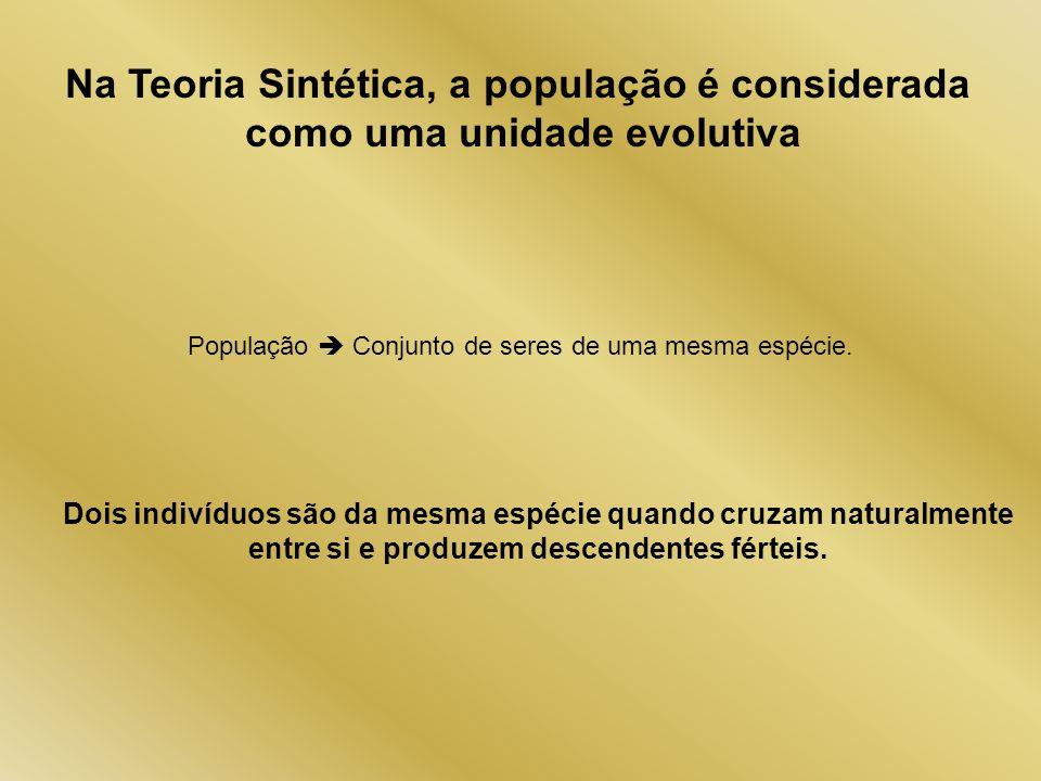 Na Teoria Sintética, a população é considerada como uma unidade evolutiva População Conjunto de seres de uma mesma espécie. Dois indivíduos são da mes