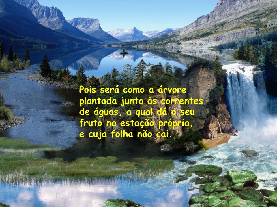 Pois será como a árvore plantada junto às correntes de águas, a qual dá o seu fruto na estação própria, e cuja folha não cai.