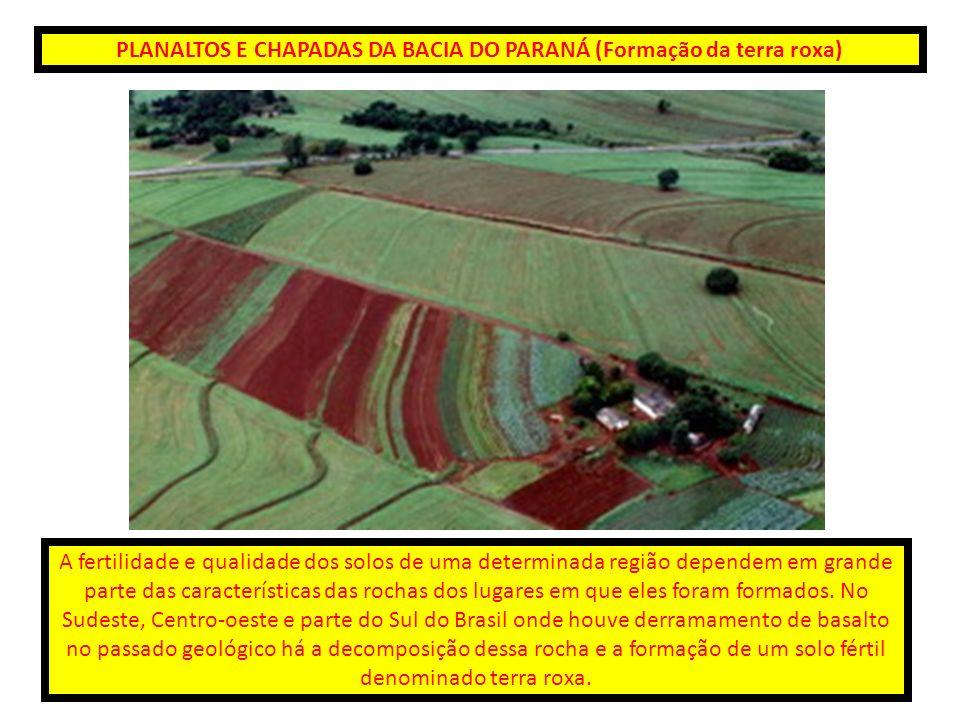 PLANALTOS E CHAPADAS DA BACIA DO PARANÁ (Formação da terra roxa) A fertilidade e qualidade dos solos de uma determinada região dependem em grande part