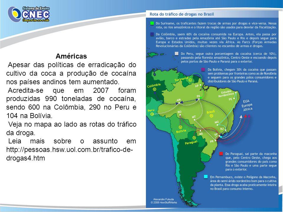 Américas Apesar das políticas de erradicação do cultivo da coca a produção de cocaína nos países andinos tem aumentado. Acredita-se que em 2007 foram