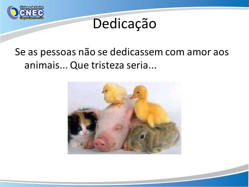 Dedicação Se as pessoas não se dedicassem com amor aos animais... Que tristeza seria...